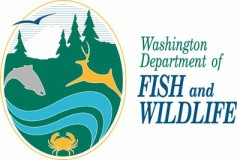 fish & wildlife logo