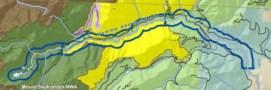 Hamma Hamma River