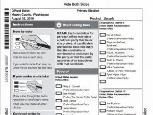 2016 primary ballot