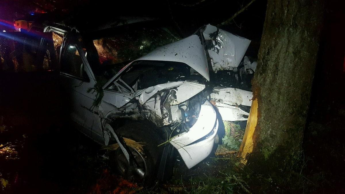 Port orchard crash